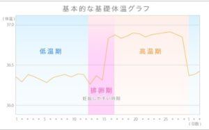 基礎体温グラフ